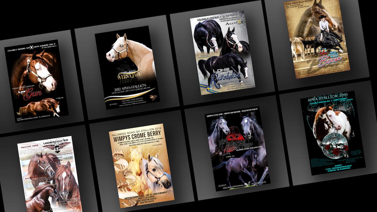 Gallery Stallion ADs