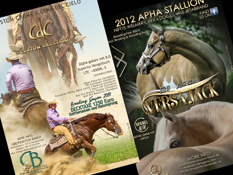 Home Stallion AD