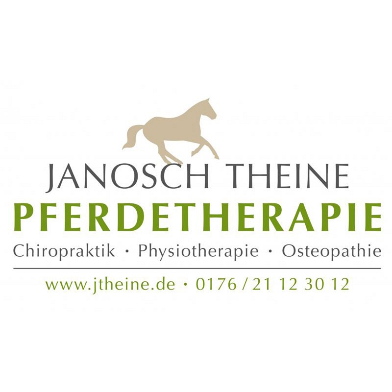Pferde Chiropraktik, Physiotherapie Osteopathie in Hamburg und Umgebung
