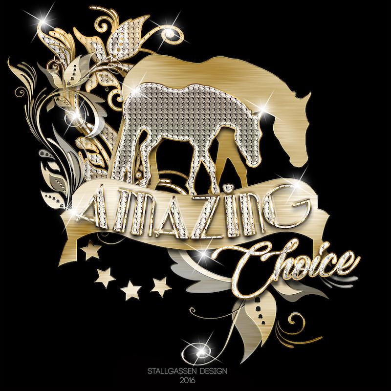 Logo Amazing Choice
