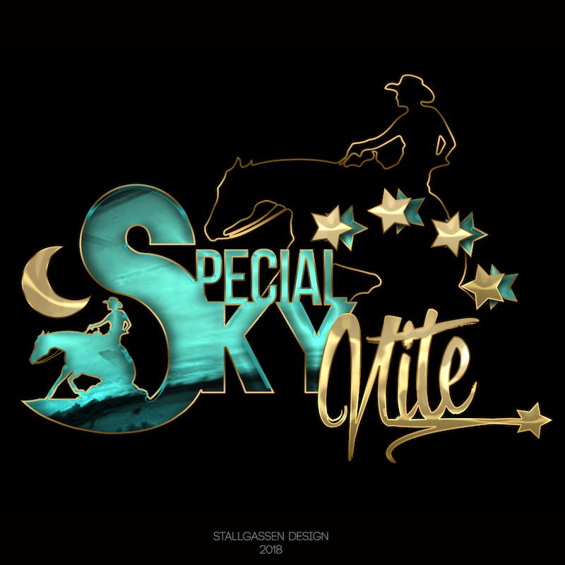 Logo Special_Sky_Nite