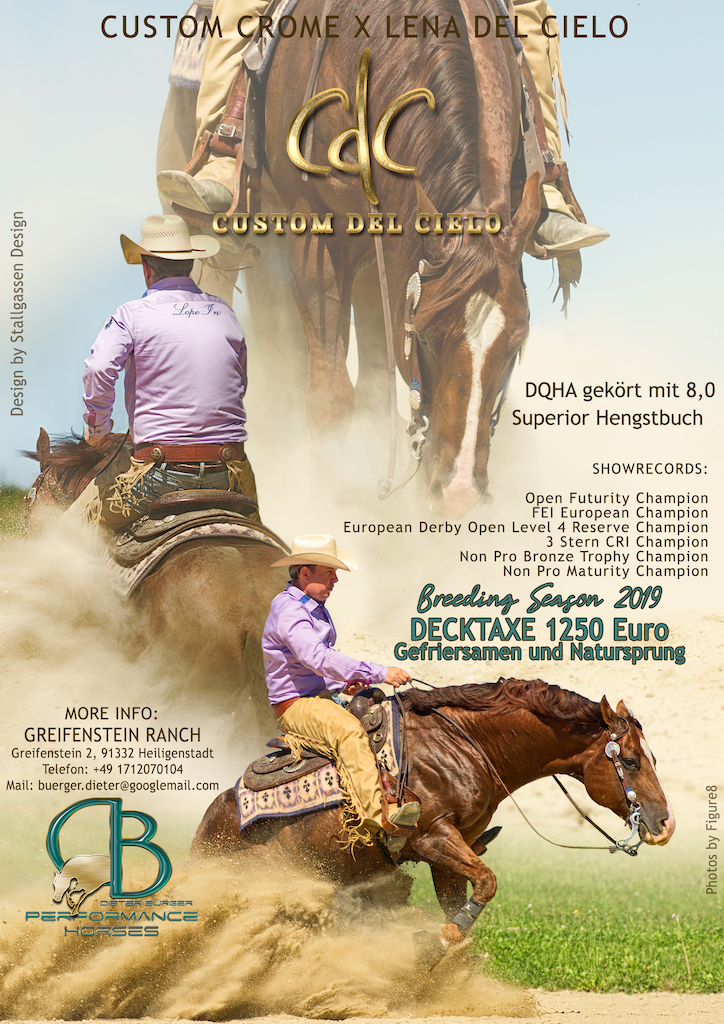 Stallion AD Custom del Cielo 2019