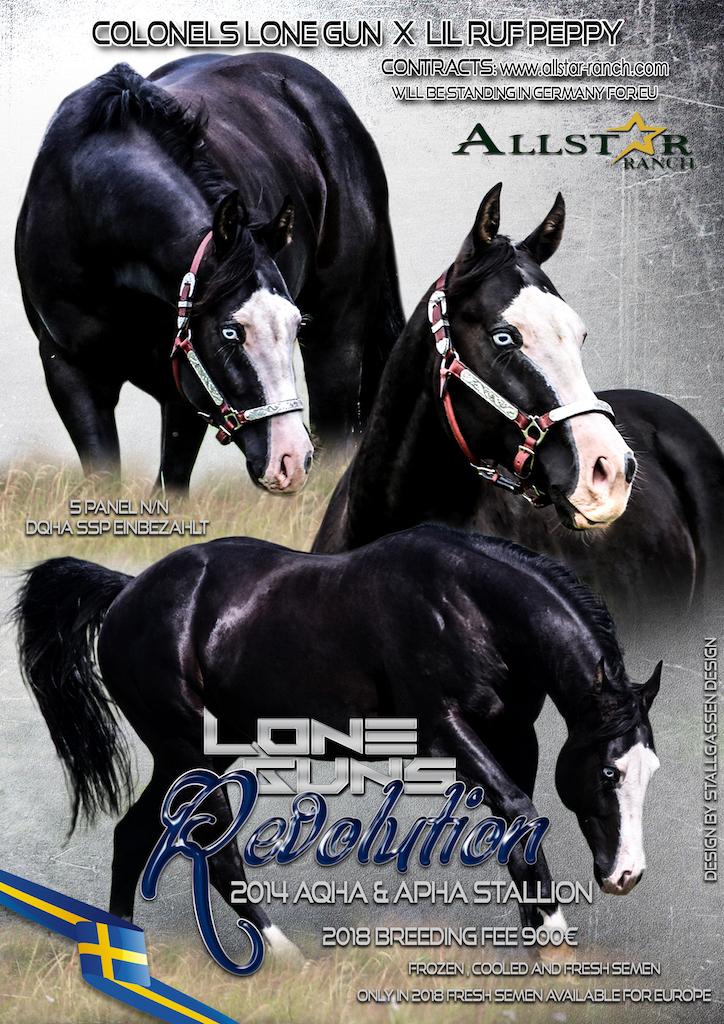 Stallion AD Lone Guns Revolution